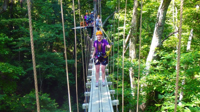The Gorge Canopy Tours Skybridge